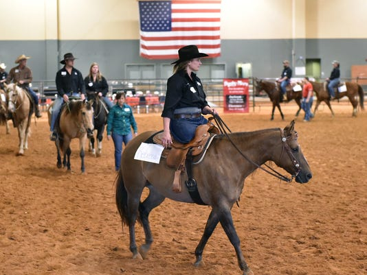TCL Horses and vets03.jpg
