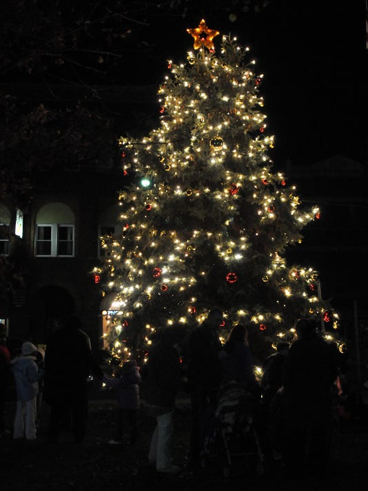 Salisbury Xmas Tree
