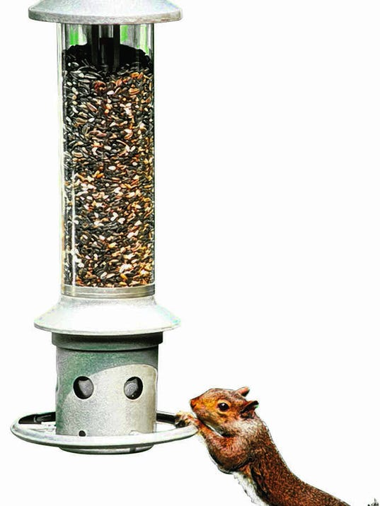 How to keep squirrels away from birdfeeders - How to keep intruders out of your garden ...