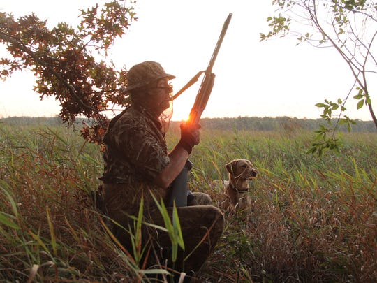 As the sun rises on opening day of the 2017 Wisconsin north zone duck season, Dave Kell of Hudson hunts with his dog Finn near Grantsburg.