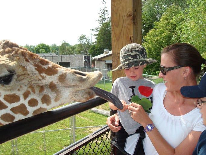 "Bryce and Denise Cochems from Oregon, Wis., recently visited the NEW Zoo. ""Where else can you get this close to a giraffe?"" writes Nancy Weidner, who submitted this photo."