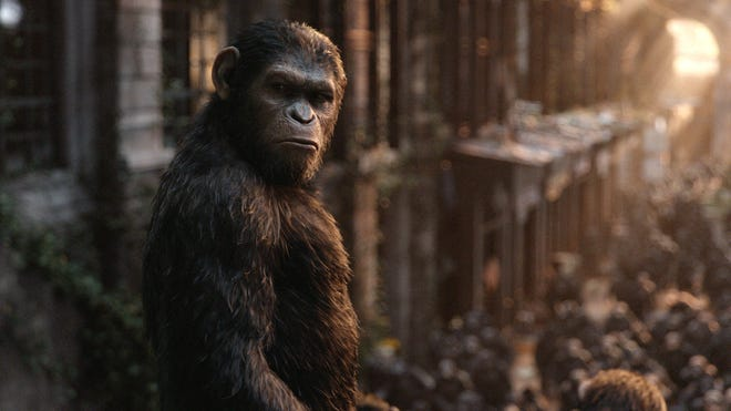 "Andy Serkis is Caesar in ""Dawn of the Planet of the Apes."""