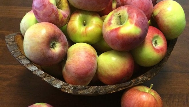 It's been a good year for apples in Fort Collins.