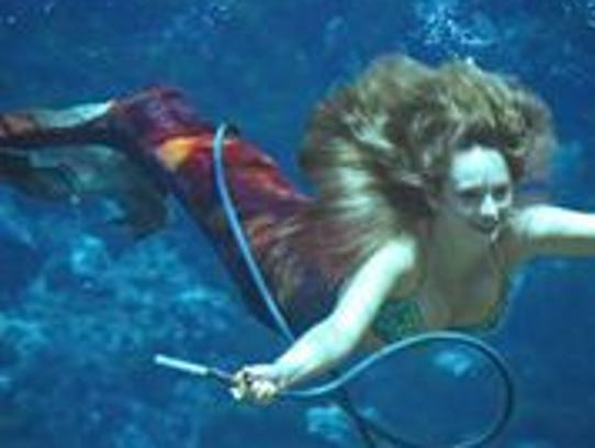The Weeki Wachee Mermaids perform synchronized swimming