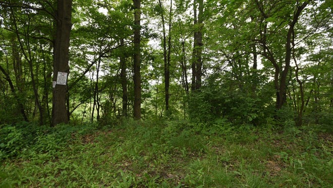 Milford Township officials are studying a request from a developer to buy this 11.28-acre parcel of land.