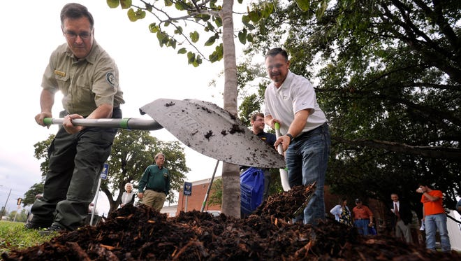 Nick Harrison of Texas A&M Forest Service (left) and Nathan Harwell of TXU Energy ceremonially scatter mulch around a Texas redbud tree at Howard Payne University Friday Nov. 4, 2016. TXU donated fifteen of the trees to HPU, the one was planted to mark Texas Arbor Day.