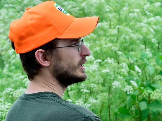 John Schwartzer, Franklin and Cumberland counties forester, stands in a field of poison hemlock. Poison hemlock grows wild along the side of the road in the 4000 block of Molly Pitcher Highway, Marion. Conium maculatum, or poison hemlock, is a highly poisonous flowering plant in the carrot family.