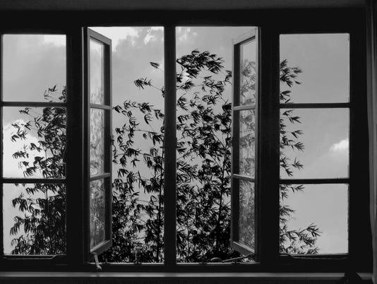 24-Frames-Janus-Films-art.jpg