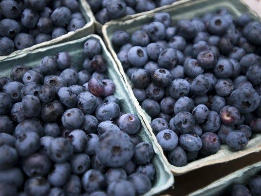 BUR 0728 blueberries C7