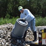 Restaurants help stock Inland Bays with oyster shells