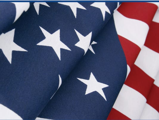 635508859632320283-veterans-day-head