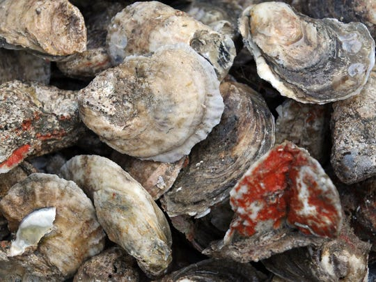 Oysters abound at Swamp Rabbit Brewery's annual roast.