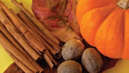 Scrumptious pumpkin bars