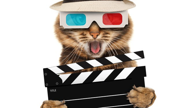 Oregon Cat Video Festival comes to Oregon State Fairgrounds 4 to 10 p.m. Saturday, March 11. Cost is $20 or $10 ages 12 and younger. Parking is $5.