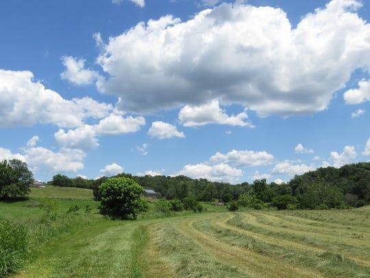 Maryland: Washington County