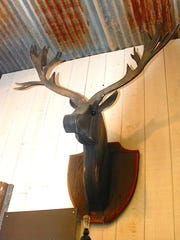 An elk trophy head made from recycled wood hangs on the shop wall.