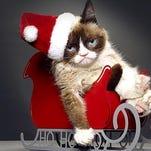 "Grumpy Cat will star in ""Grumpy Cat's Worst Christmas Ever."""