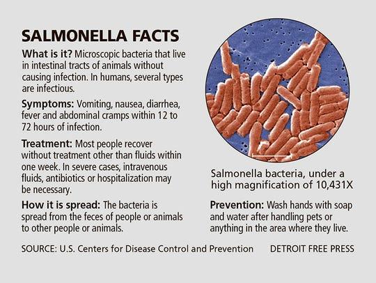 Salmonella facts