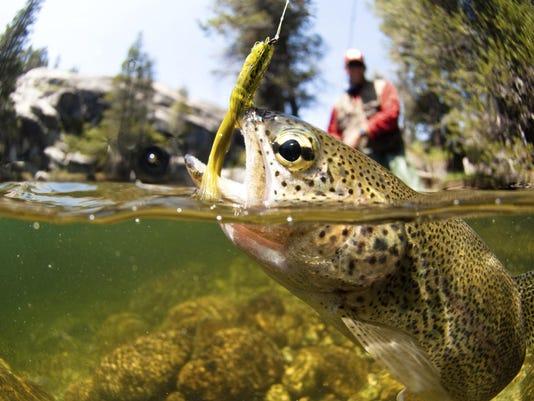 1 Fishing