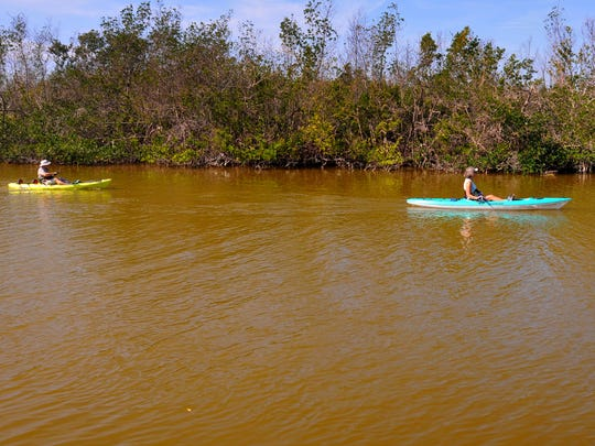 Bill and Amy DeBoer paddle past Ramp Road Park in Cocoa Beach, with the water getting browner by the day. The quality of the water in the Indian River Lagoon is deteriorating again, with algae levels close to 2016 that caused a massive fish kill.