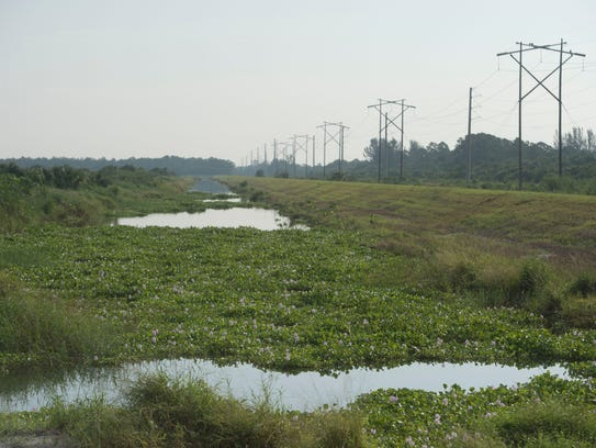 After a successful 450-acre pilot project, the South