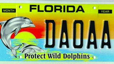 A Florida Protect Wild Dolphins license plate.