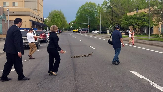 Citizens and a Salem Police officer led a mother duck and ducklings through downtown Salem Wednesday, April 20, 2016.