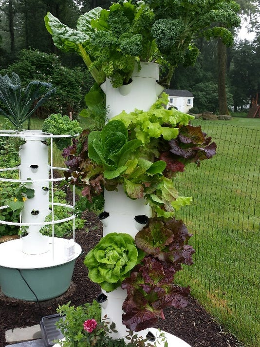 tower garden pic 1.jpg