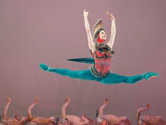 ballet50