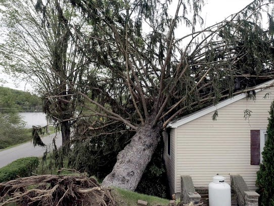 Trees can be seen toppled over with some on houses