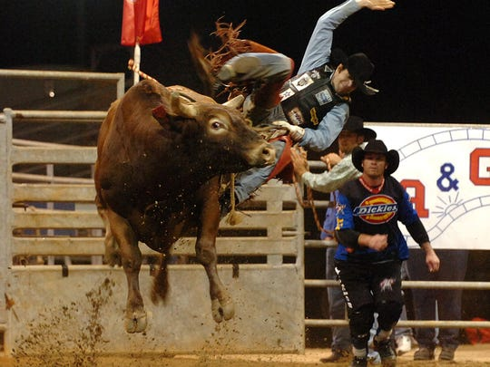 Bullfighter Darrell Diefenbach (right) runs into action as an unidentified cowboy loses his grip from a bull while competing in 2011 at the Professional Bull Riding event at the St. Lucie County Fairgrounds. This year's bull riding tournament is 7:30 to 10:30 p.m. Saturday. Gates open at 3 p.m.