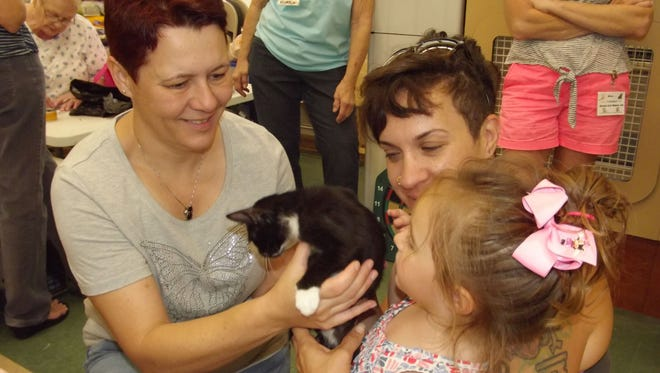 Louise Cunningham shows kitten Treasure to Kennedy Greer as mom Ashley looks on. The family attended the Raining Cats  Rescue, Inc.'s ninth year celebration at Petco in Vero Beach.