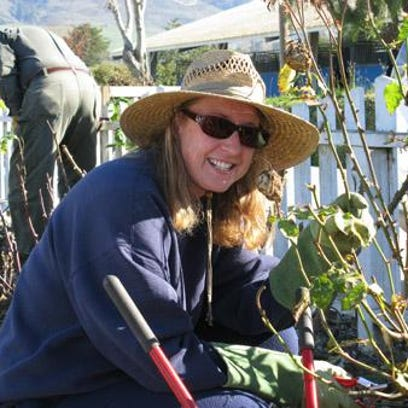 Rose Society holds two months of pruning workshops