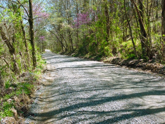 Payne Hollow Road, a quiet, little-used gravel road