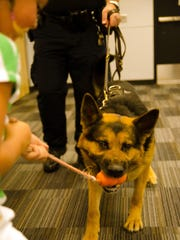 Officer Emir II seems unsure about cameras at the Des Moines Police Department's Canine Unit demonstration held at the East Side Library June 17, 2014.
