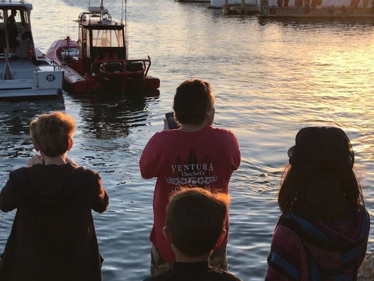 Upon hearing that a humpback whale was stuck in Ventura Harbor on Saturday, people went there to snap a photo.