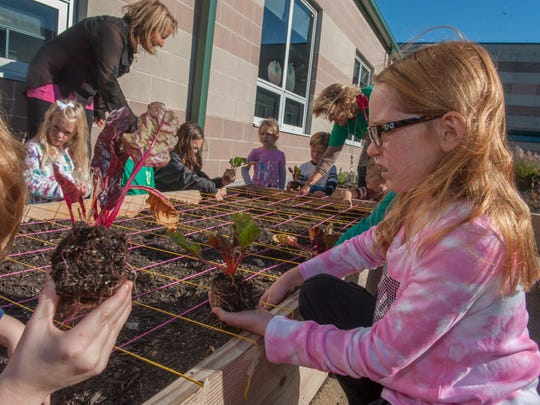 Rice Elementary School students including Kara Mulholland (right) plant swiss chard and radish seeds in the garden at the Marlton school, which started a garden last school year.