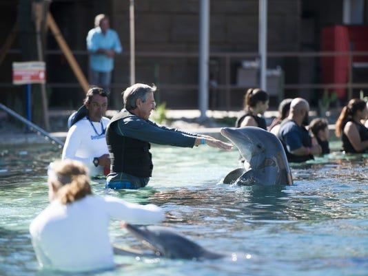 Dolphinaris Arizona opening