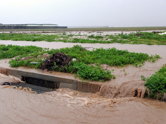 Photographed early Sunday morning, sodden fields along Boronda Road shed excess rain.