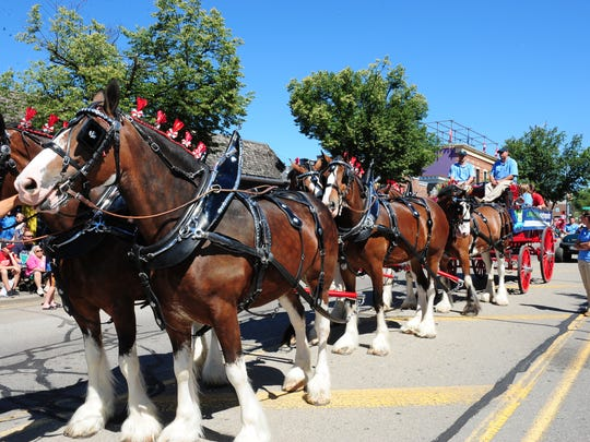 Huron-Clinton Metroparks displayed the beautiful Clydesdale horses at the annual Fourth of July Parade in Milford.