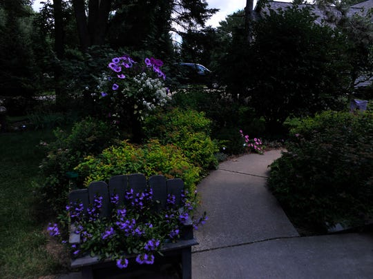 Splashes of color catch visitors' eyes as they enter the walk that leads to Barb Herreid's garden in Rome.