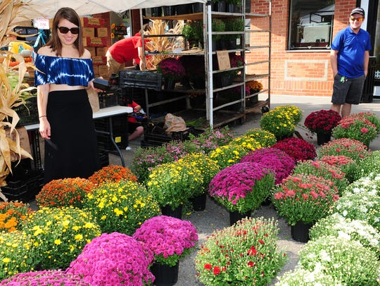 Northville resident Paige Tracy looks at plants that were available at last year's Heritage Festival as her boyfriend, Drew Wiser, looks on.