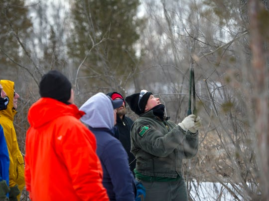 Volunteers remove and treat invasive buckthorn at Brighton State Recreation Area, allowing the native species to prosper.
