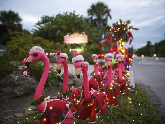 Holiday-pink-.jpg