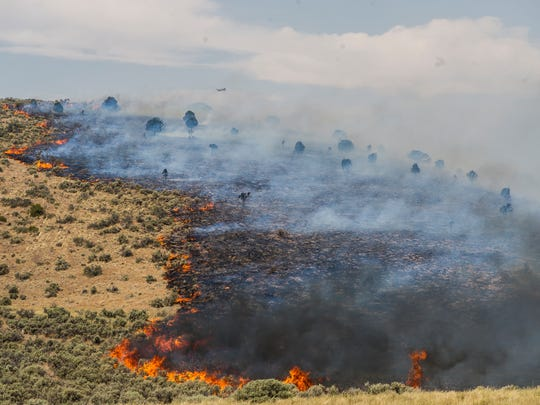 Firefighters battle flames at the Black Mountain Fire on Highway 130 Thursday, June 28, 2018.