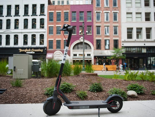 The rentable Bird scooters can be located and rented