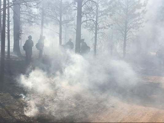 Crews fight White Fire in northern Arizona