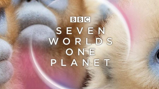 "Explore one continent every week, with wonders unique to each in ""Seven Worlds, One Planet."""