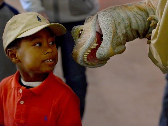 "Jordan Rosado interacts with ""Tina,"" a baby Tyranasaur"