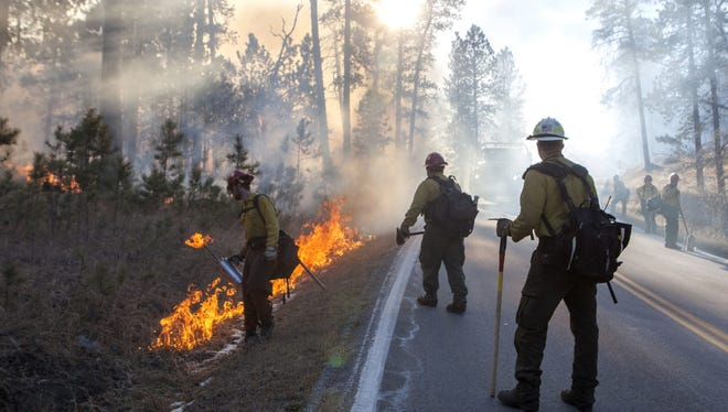 Firefighters use back burning to control the spread of a fire in Custer State Park in South Dakota on Tuesday, Dec. 12, 2017.  High wind gusts are making it more difficult for firefighters to battle the blaze at the park in the Black Hills of South Dakota.